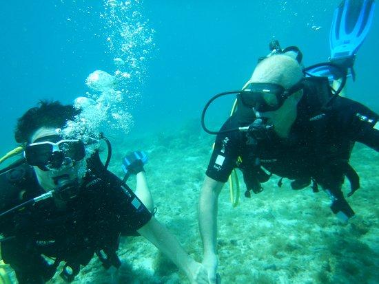Duikschool duiken op curacao