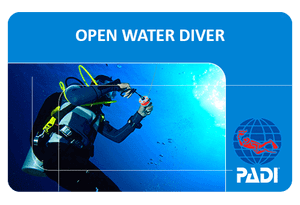 PADI-Open-Water-Diver-Curacao